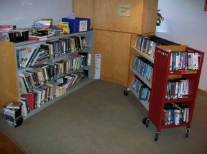 maywood public library shelves