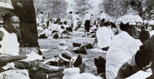 Marchers sitting under elms
