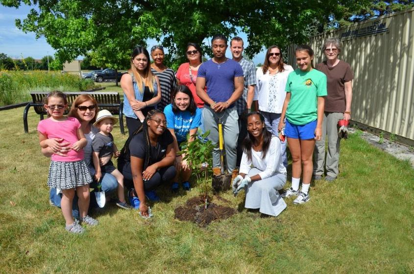 Triton College Tree Program.jpg