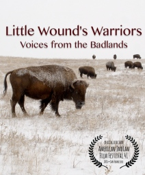 littlewoundswarriors_poster