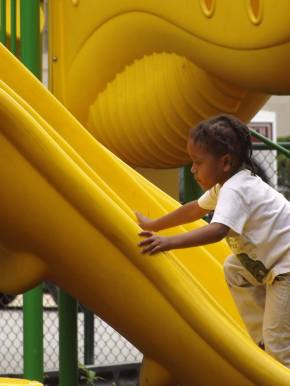Maywood Park District Competing for $20K Grant for ParkImprovements